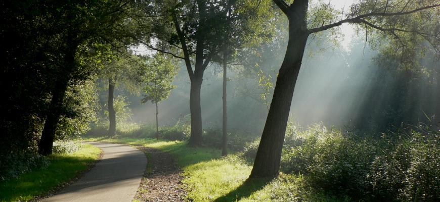 Szlaki rowerowe w okolicach gospodarstwa Danielówka